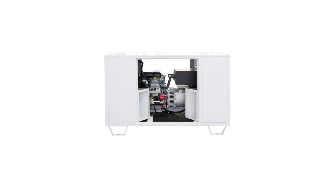 Газовый генератор Endress ESE 808 GF (8080102)